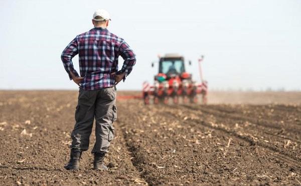 Támogatás a fiatal mezőgazdasági termelők számára