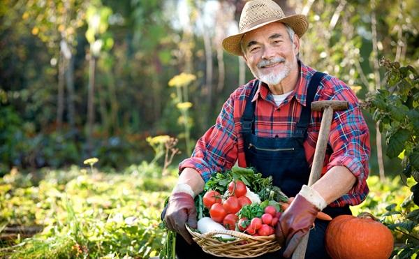 5,5 milliárd forint a kistermelők lehetőségeinek javítására